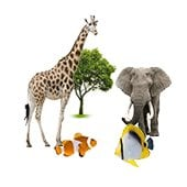 Zoos, protected areas and oceanariums