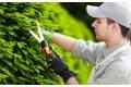 Работы по уходу за садом и газоном