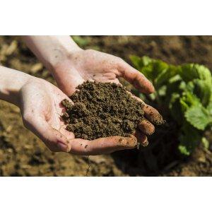 Удобрения из органических отходов