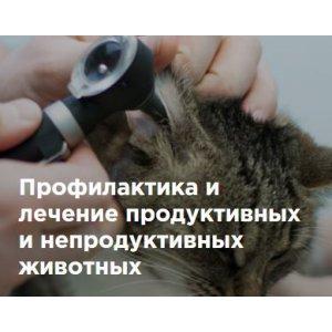 Профилактика и лечение продуктивных и непродуктивных животных
