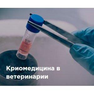 Криомедицина в ветеринарии