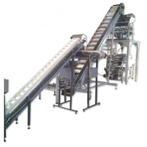 Conveyors for feeding bulk and small-piece food products