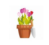 Termékek virágokhoz
