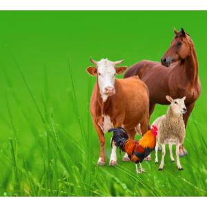 Продукция для животноводства,птицеводства и растениеводства